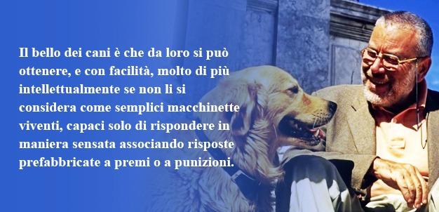 La mente degli Animali La bella zoologia di Danilo Mainardi