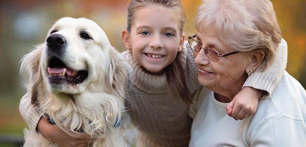 sindrome-da-disfunzione-cognitiva-nel-cane